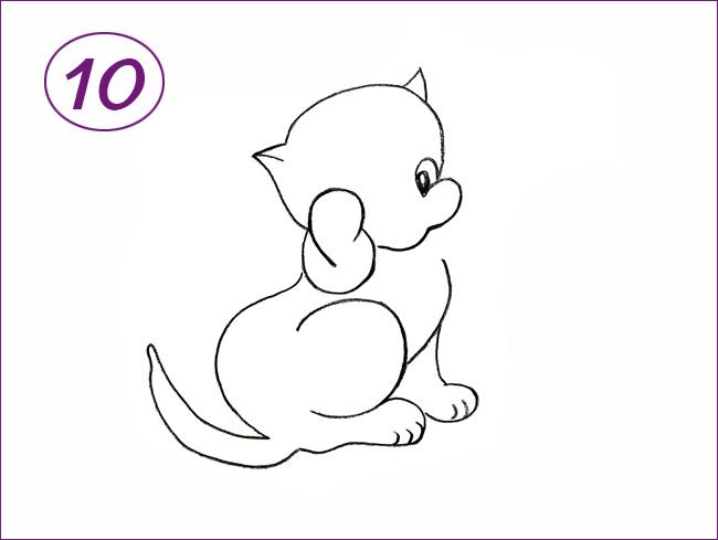 рисунок кота шаг 10