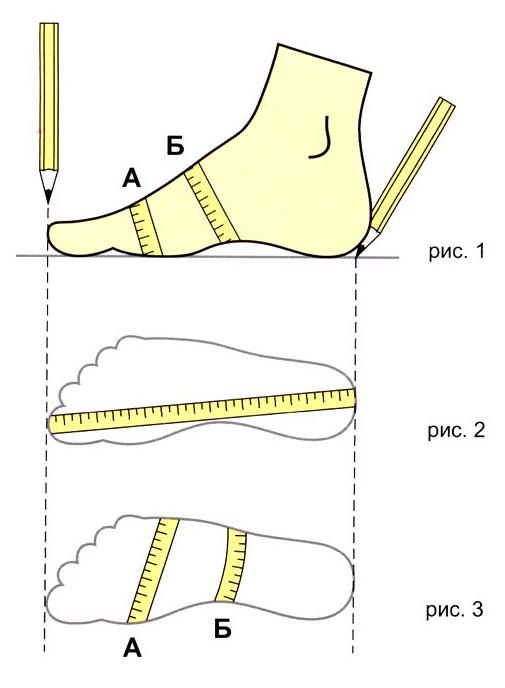 определение размера обуви